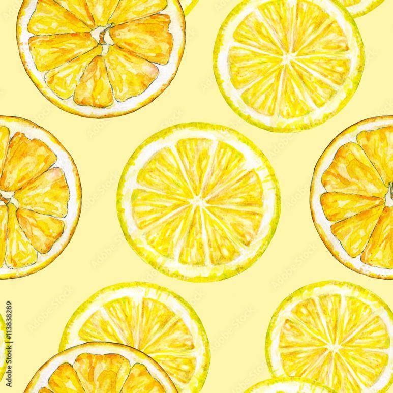 Pomaranczowe Segmenty Cytryny Rysunek Akwarela Praca Reczna Owoc