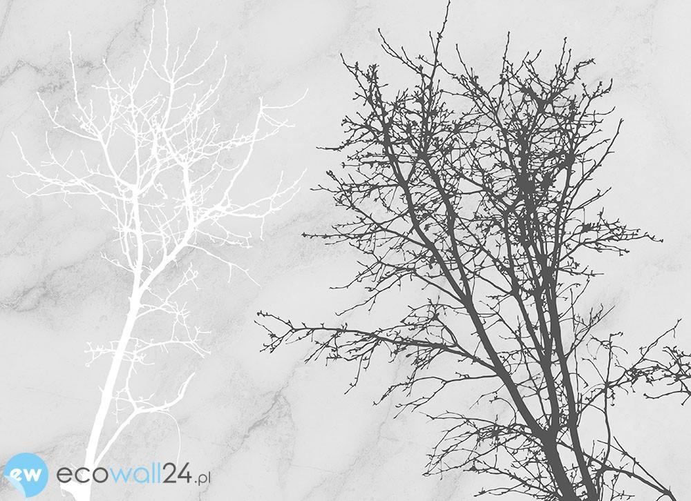 Kontrastowe drzewa