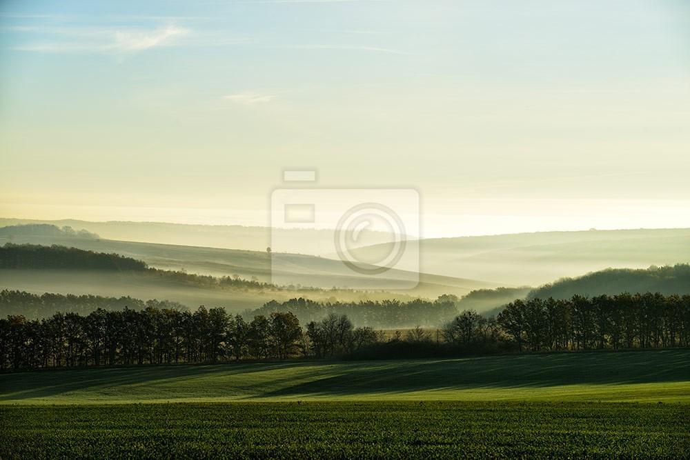 Krajobraz góry i lasu we mgle w promieniach słonecznch