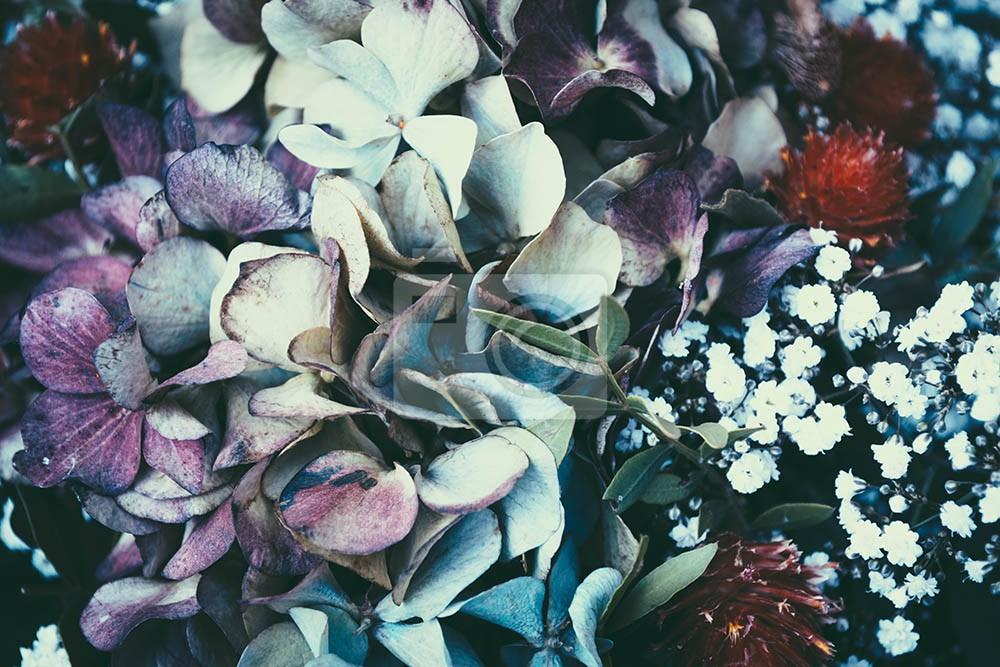 Kwiaty na ciemnym tle
