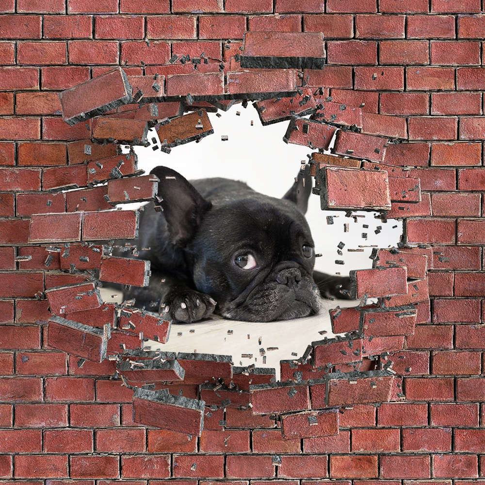 Pies w cegle biało- czarne